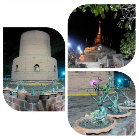 PhotoGrid_1418578371677